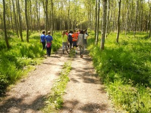 Schools-Visit-to-Log-On-Firewood